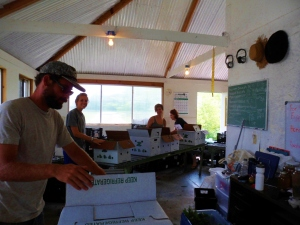 Packing vegetable boxes